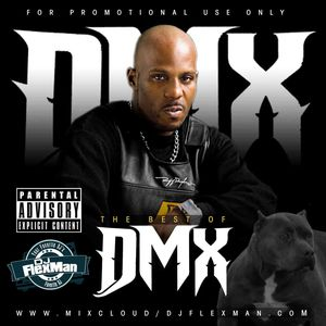 Best of DMX Songs Mixtape AllTime By Dj FlexMan