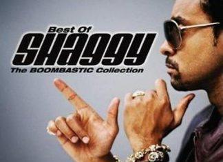 Best of Shaggy Dj Mixtape || Shaggy Greatest Hit Songs