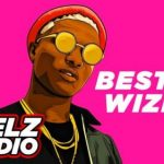 Best Of Wizkid Afrobeat Mixtape (2011-2019)