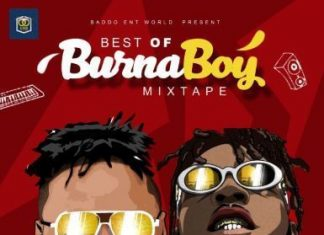 Dj Baddo Best Of Burna Boy Mix 2019