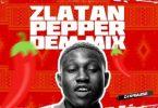 DJ Kaywise - Pepper Dem Mix 2019