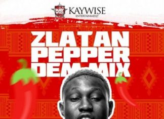 DJ Kaywise - Pepper Dem Mix 2019