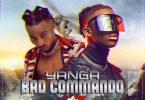 @djmellowshe DJ Mellowshe New Mixtape - Yanga Bad Commando Mix