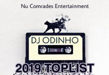 DJ Odinho – 2019 Toplist Mixtape (Best Songs In 2019)