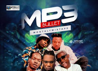 DJ PlentySongz – Mp3Bullet Monthly Mixtape (January 2020)