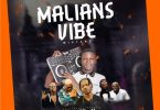 Dj Shizzy – Malians Vibes Mixtape 2020