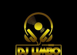 DJ Limbo – Freestyle Non Stop Party Mix