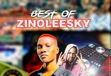DJ Samo Bee - Best Of Zinoleesky Mix 2020