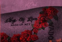 Kizz Daniel - King Of Love Album (Mash-Up Mix)