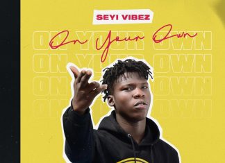 Dj glitter - Best Of Seyi Vibez mixtape (All Seyi Vibez Songs)