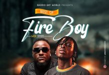 DJ Baddo - Best Of Fireboy Mix 2020