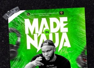 DJ Limbo – Made In Naija Mix (TPM Vol.29) 2020