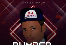 DJ Zeewhy – Bumper 2 Bumper Mix (Latest Dance All Mix)