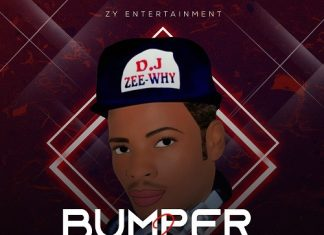 DJ Zeewhy – Bumper 2 Bumper Mix (Latest Dance All Mix)